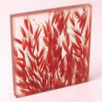 Триплекс декоративный колосья — Мир стекла и зеркал Чебоксары