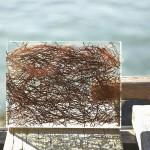 Триплекс декоративный веточки — Мир стекла и зеркал Чебоксары