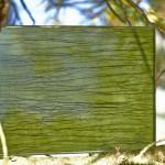 Триплекс декоративный флора — Мир стекла и зеркал Чебоксары