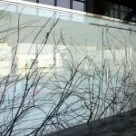 Триплекс для офисных перегородок — Мир стекла и зеркал Чебоксары