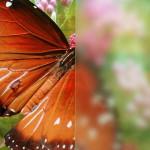 Стекло матовое сатинато мателюкс — Мир стекла и зеркал Чебоксары